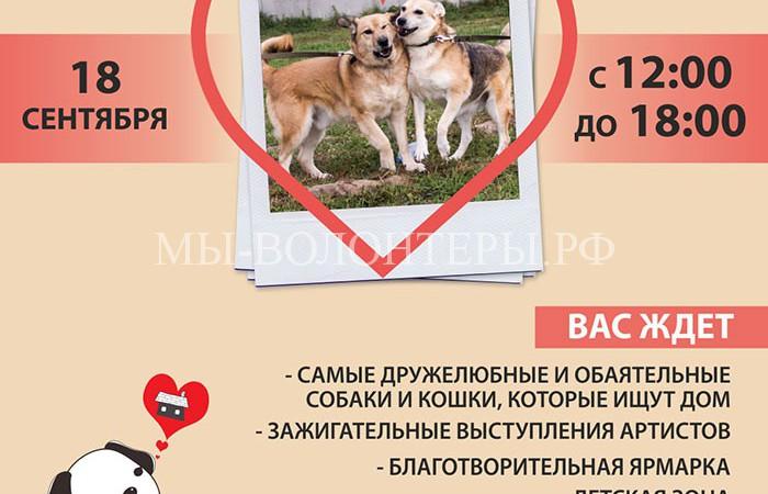 18 сентября выставка приюта Щербинка — «Собаки, которые любят» в парке Садовники
