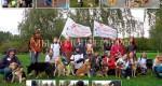 Успешно прошла  выставка собак приюта Щербинка «Собаки, которые любят»,  Москва