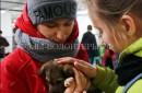 «Друзей выбирают!» — выставка-раздача бездомных животных в Петрозаводске