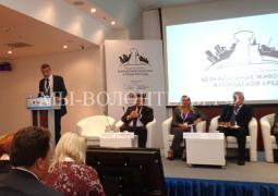I Всероссийский Форум «Безнадзорные животные в городской среде» - отчет волонтеров приюта Щербинка