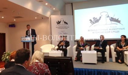 I Всероссийский Форум «Безнадзорные животные в городской среде» — отчет волонтеров приюта Щербинка