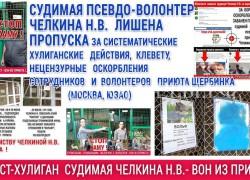 Лишена пропуска судимая Челкина Н.В. за хулиганства и нецензурные оскорбления