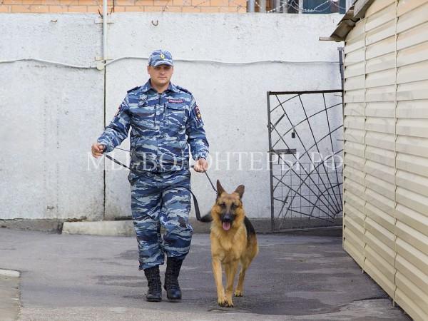 Спасенная из сточной ямы овчарка Мухтар определена на службу в полицию
