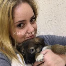Вагоша, один из щенков собаки Таганки, родившихся 3 октября прямо в вагоне метро, обрела дом