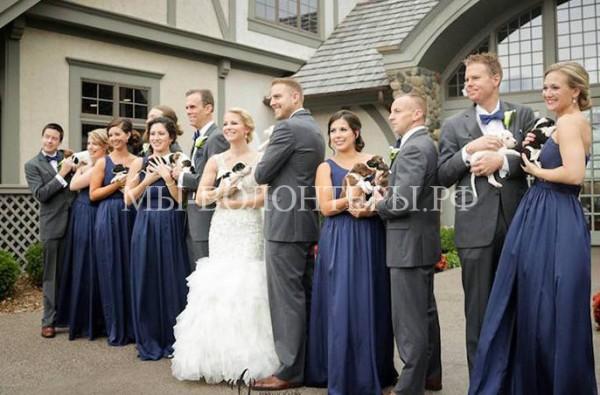 Пара отметила свадьбу, на которой особыми гостями были 13 щенков из приюта