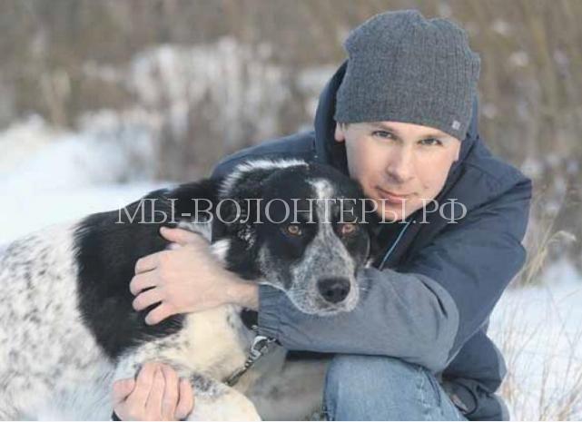 Лайма и Джина с космодрома «Восточный» обрели дом в Москве