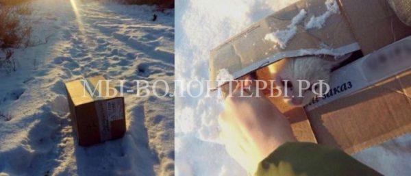 Женщина спасла котенка из выброшенной на мороз коробки