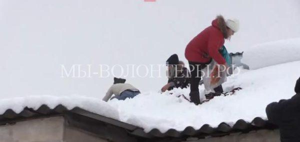 Как жители спасали бездомную собаку с крыши
