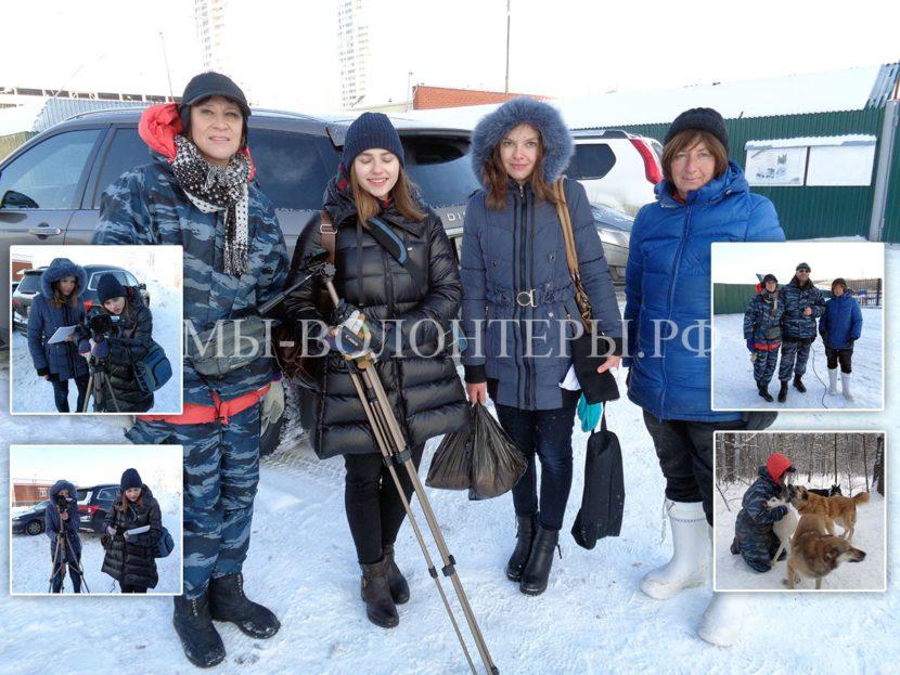 Волонтеры приюта Щербинка дали интервью студентам-журналисткам ВШЭ