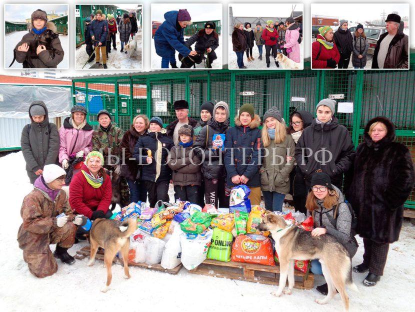 Школьники и учителя ГБОУ №1989 посетили приют Щербинка и привезли подарки