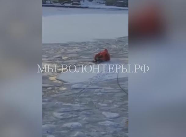 Спасение собаки, оказавшейся на льдине