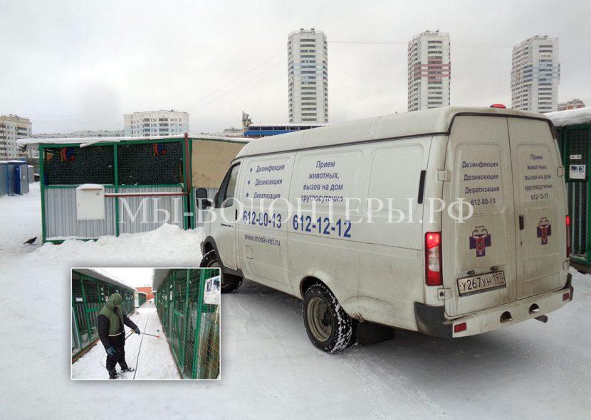 Приют Щербинка: дезинфекционная обработка, с 25 января  закрыт на переучет (передача в ГБУ Автодор ЮЗАО)