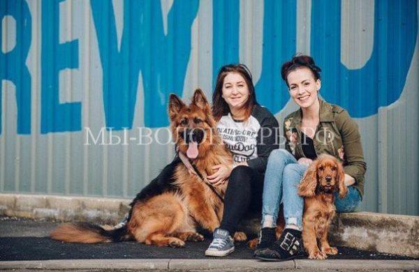 Неделя «Щенячьего родителя»- компания дарит оплачиваемый отпуск сотрудникам, которые приютили собаку