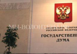 В Госдуме планируется принять протокол по безнадзорным животным