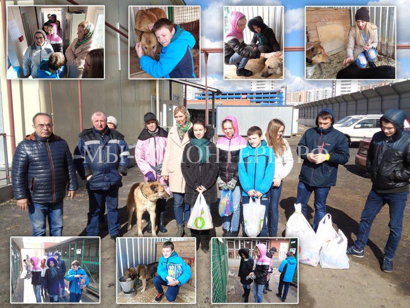 Школа ГБОУ №1613: в каникулы школьники привезли помощь приюту Щербинка !