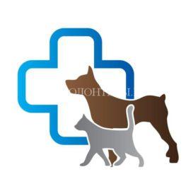 В Подмосковье вводится электронная запись к ветеринарному врачу