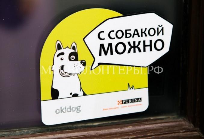 «С собакой можно!» Проект для владельцев собак