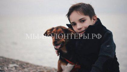 В Санкт-Петербурге пройдет фотовыставка о милосердии к животным-инвалидам