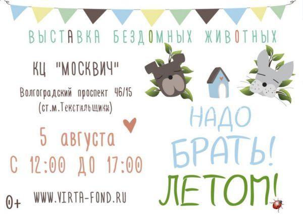5 августа состоится выставка бездомных собак и кошек «Надо брать! ЛЕТОМ!»