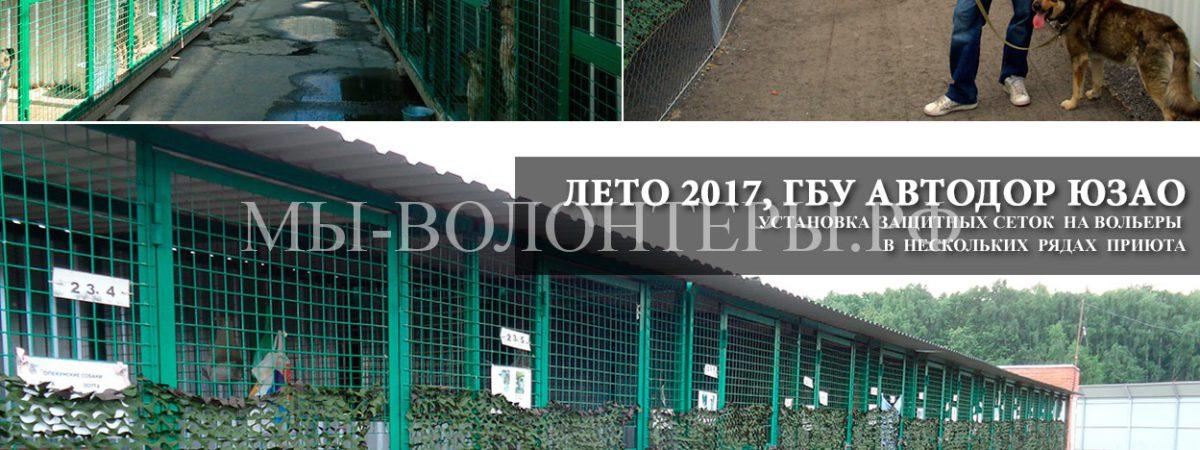 Защита собак в вольерах в летний период, приют Щербинка