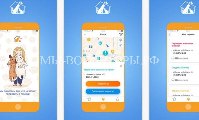 В Москве и Московской области представлено мобильное приложение для помощи бездомным животным