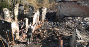 Ростовские волонтеры спасают животных, пострадавших во время страшного пожара