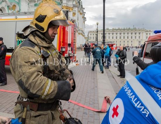 Как пожарные спасали эрмитажных котов