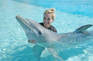 Декларация о правах и свободе дельфинов и китов
