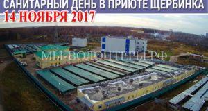 Внимание! 14 ноября (вторник) 2017 в приюте Щербинка санитарный день - ремонтные работы