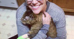 Кот по кличке Пилот вернулся к своим хозяевам спустя 10 лет после пропажи