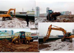 Завершаются работы по обустройству территории перед приютом «Щербинка»
