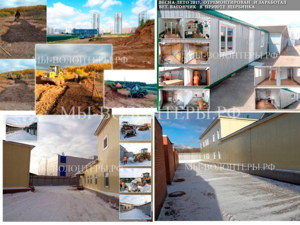 Итоги  2017 года: прогресс в приюте Щербинка, крикуны «переобулись в воздухе»