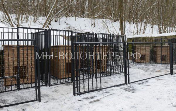 В Смоленске начнет работу ветеринарный пункт временного содержания безнадзорных животных