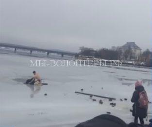 Житель Карелии спас бездомную собаку, провалившуюся под лед