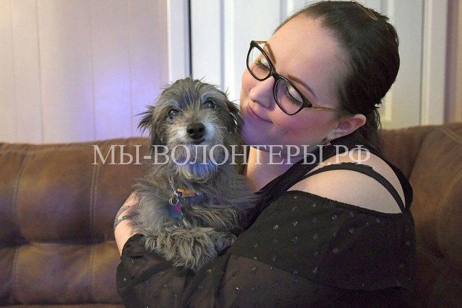 Девушка взяла из приюта собаку, и оказалось, это был щенок, с которым ее разлучили в детстве