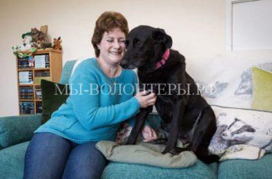Собака и ее хозяйка вместе борются с тяжелым недугом