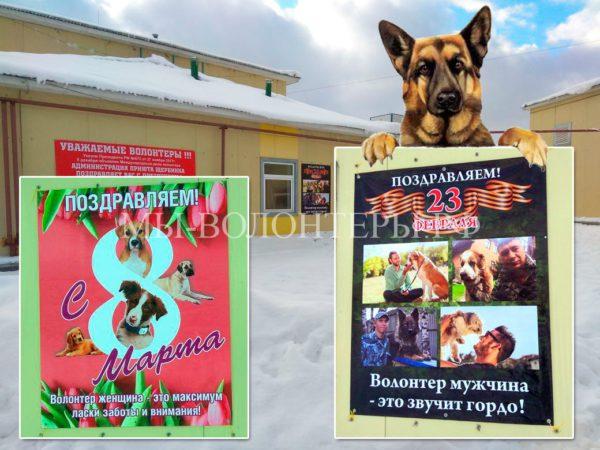 Поздравление с 23 февраля и 8 марта в адрес волонтеров и работников приюта Щербинка