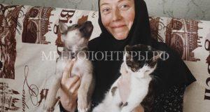 За 21 год православная монахиня Арсения нашла хозяев для 12 тысяч бездомных кошек и собак