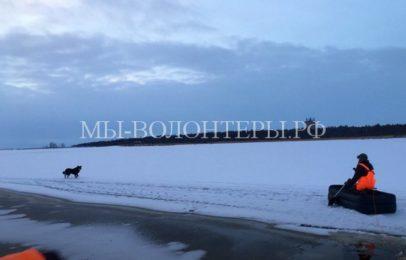 Спасение собаки, застрявшей на льдине
