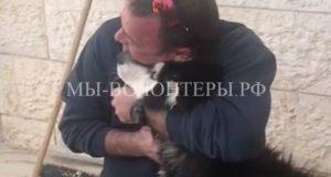 Умение петь помогло потерявшейся собаке вернуться домой