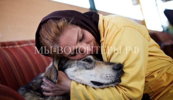 Представитель СПЧ предложил создать приюты для бездомных животных в воспитательных колониях