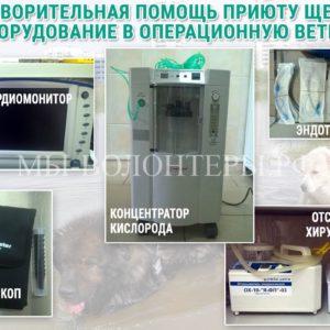 Благотворительная помощь приюту Щербинка: оборудование в операционную ветблока
