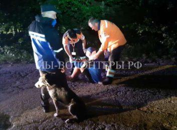 Бездомный пес согревал раненого велосипедиста на горной дороге