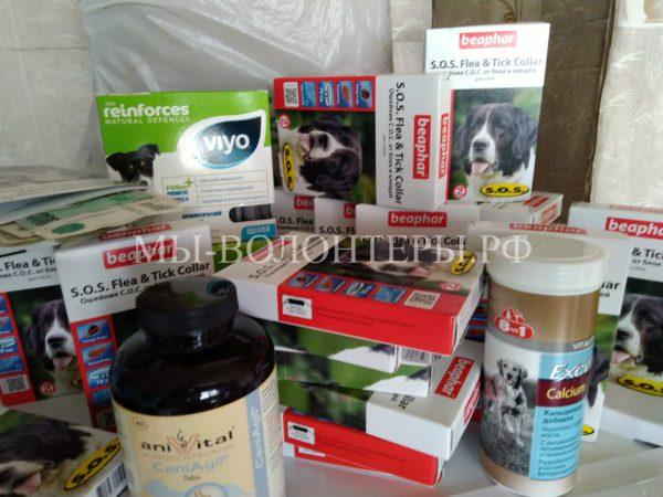 Команда помощи  «Алабай Хэлп» передала приюту «Щербинка» благотворительную помощь !