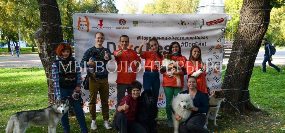 В Новокузнецке состоялся Первый городской фестиваль собак «DogFest»