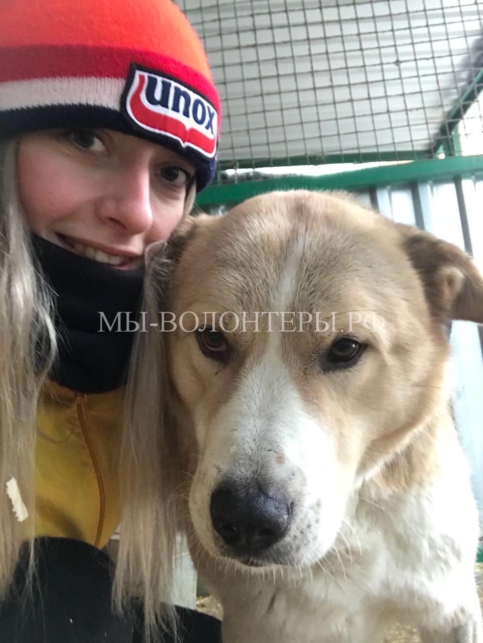 28 января 2018, Маша Трофимова с Афиной в вольере