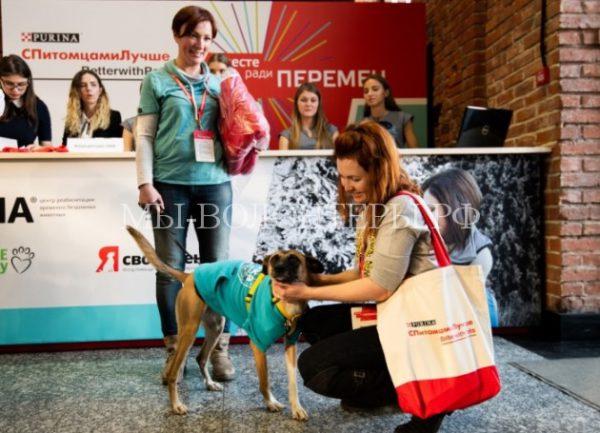 «Вместе Ради Перемен» объединил единомышленников ради помощи животным