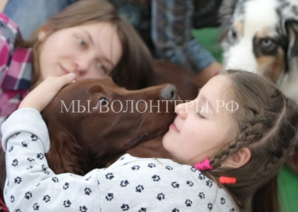 Собака Дуся из волонтерского центра помощи животным помогает детям-инвалидам