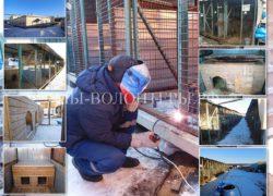 В приюте Щербинка идет активная стройка новых вольеров вместо ветхих «ВЫСЕЛОК» (ВИДЕО)