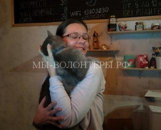 Кошкин дом «Котофейня» приглашает в гости